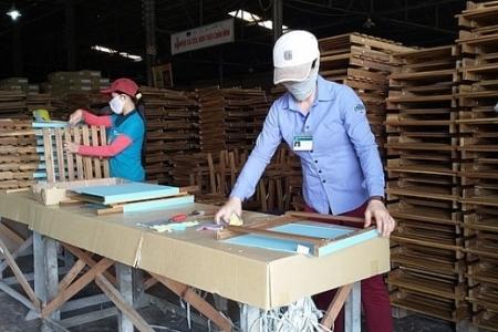 Xuất khẩu gỗ tăng mạnh ở nhiều thị trường