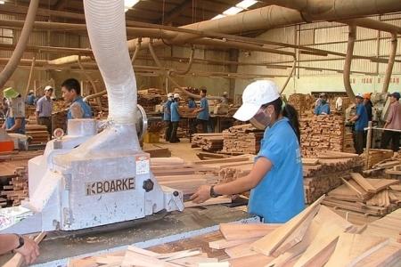 Triển vọng sáng cho xuất khẩu gỗ sang EU