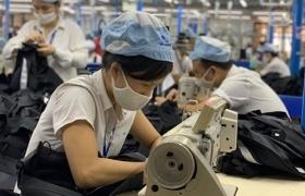 Khoảng 10,3 triệu lao động Việt Nam bị ảnh hưởng bởi dịch Covid-19?