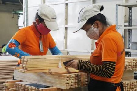 Xuất khẩu gỗ liên tiếp lập kỷ lục bất chấp Covid-19