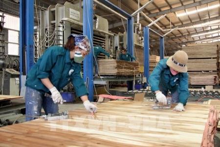 Canada là thị trường còn nhiều tiềm năng cho doanh nghiệp đồ gỗ và nội thất Việt Nam khai thác mở rộng thị phần và nâng cao giá trị.