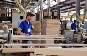 Vào CPTPP, ngành gỗ Việt gặp thách thức về thương hiệu, sở hữu trí tuệ